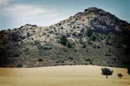 rural-4